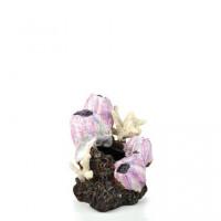 46145 Декорация biOrb Barnacle ornament налеп , малък, розов
