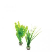 46055 Растения комплект biOrb Easy plant, малък, зелен