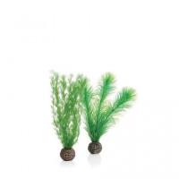 46083 Растения комплект biOrb Feather fern пера от папрат , малък, зелен